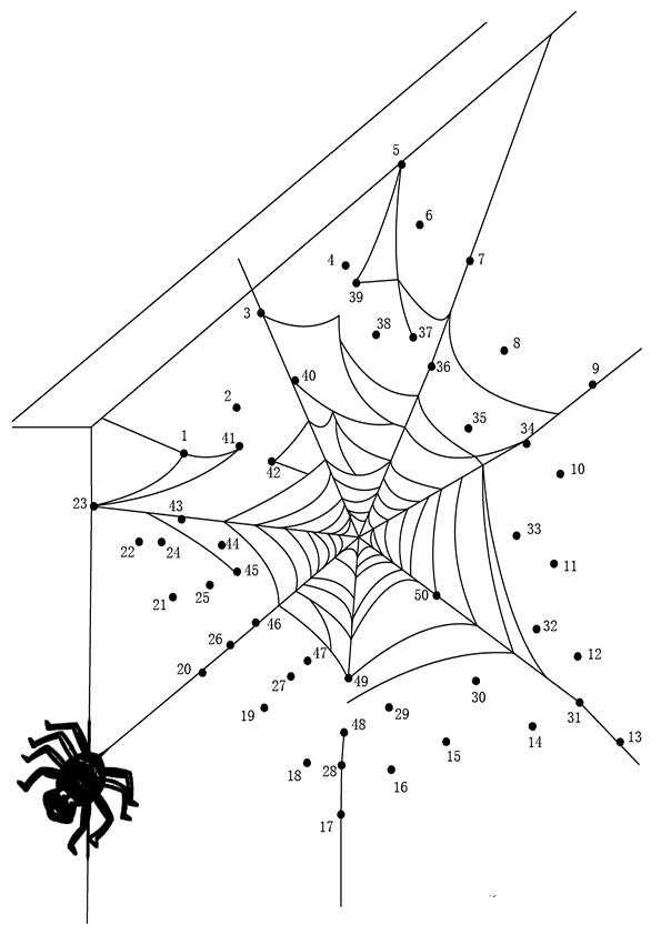 Ausmalbilder  Zeichnen nach Zahlen-57