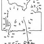 Zeichnen nach Zahlen-58